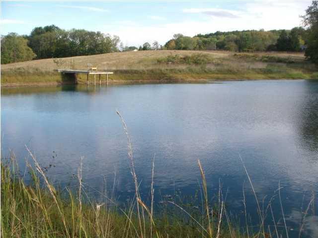 Farm, Other - La Grange, KY (photo 3)