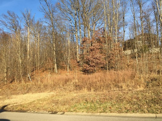 Residential Land - Louisville, KY (photo 5)