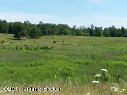 Residential Land - Cecilia, KY (photo 1)