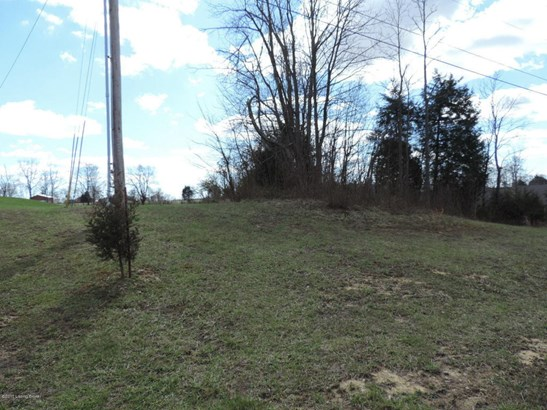 Residential Land - Smithfield, KY (photo 3)