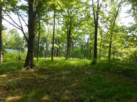 Residential Land - Lockport, KY