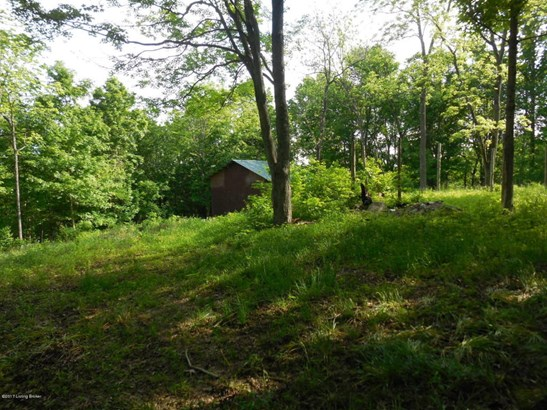 Residential Land - Lockport, KY (photo 2)