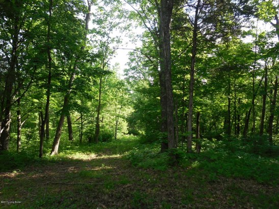 Residential Land - Lockport, KY (photo 4)