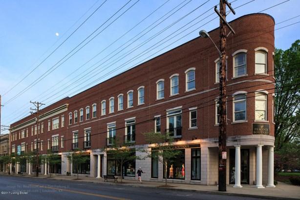 Townhouse, Condominium - Louisville, KY (photo 3)