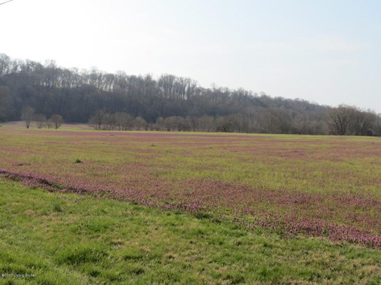 Residential Land - Prospect, KY (photo 5)