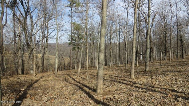 Residential Land - Battletown, KY (photo 1)