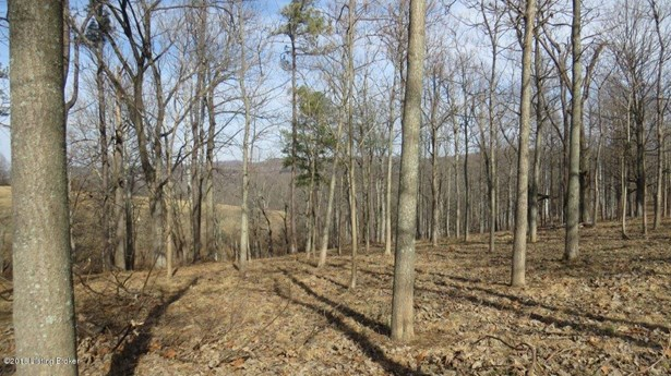 Residential Land - Battletown, KY (photo 2)