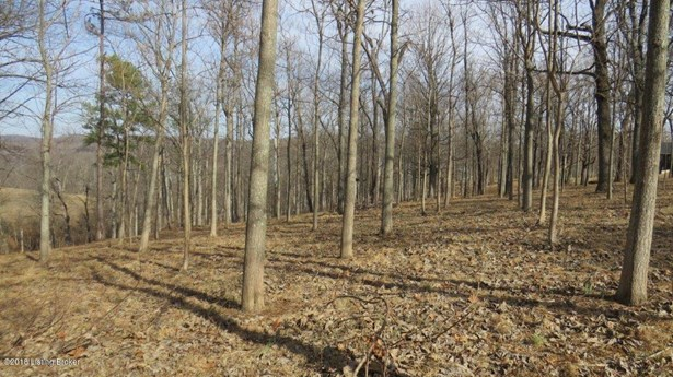 Residential Land - Battletown, KY (photo 3)