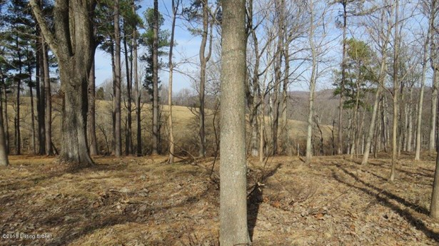 Residential Land - Battletown, KY (photo 4)