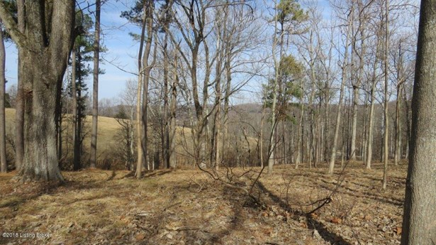 Residential Land - Battletown, KY (photo 5)