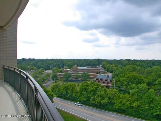 Condominium, Other - Louisville, KY (photo 4)