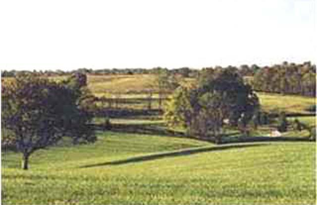 Residential Land - La Grange, KY (photo 2)