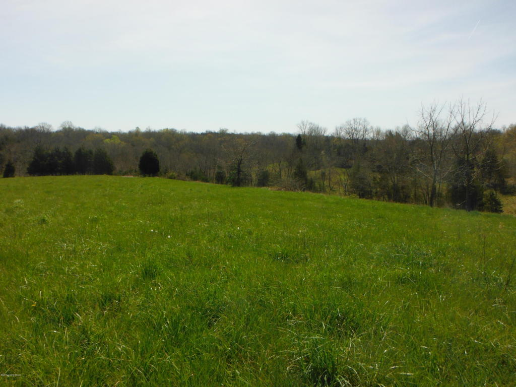 Residential Land - Pleasureville, KY (photo 4)