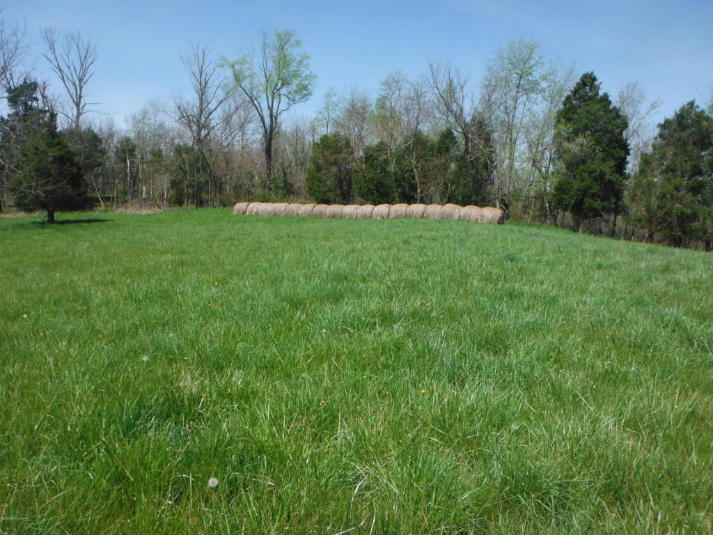 Residential Land - Pleasureville, KY (photo 5)