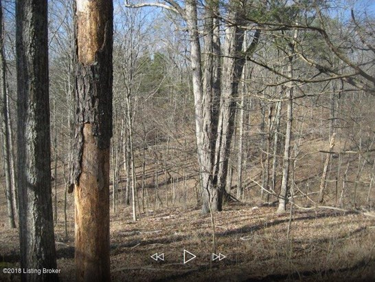 Residential Land - Lawrenceburg, KY (photo 2)