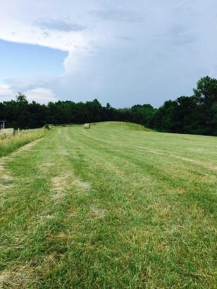 Residential Land - Bloomfield, KY (photo 2)