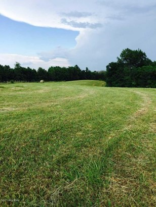 Residential Land - Bloomfield, KY (photo 5)