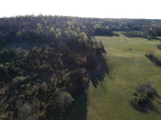 Residential Land - Cecilia, KY
