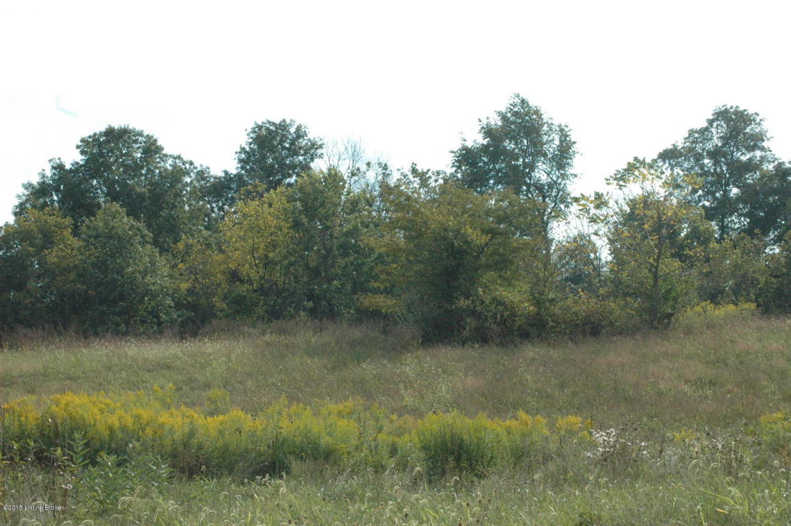 Residential Land - Shelbyville, KY (photo 3)