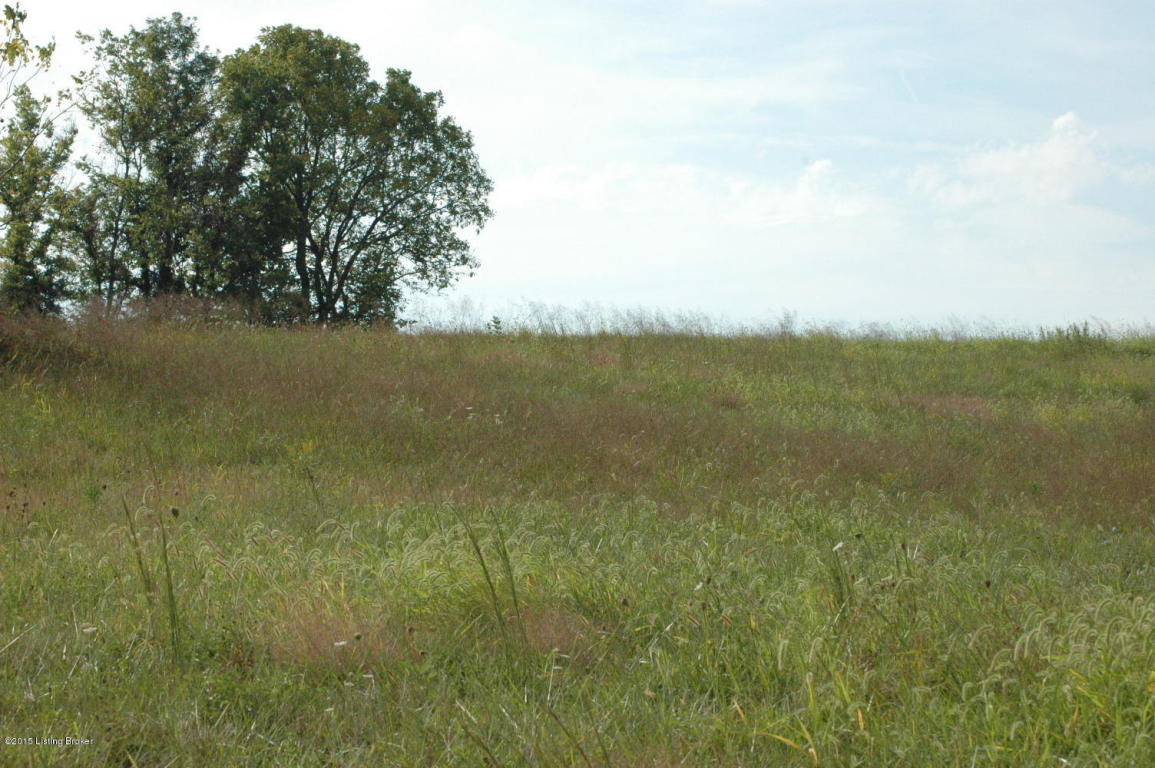 Residential Land - Shelbyville, KY (photo 4)