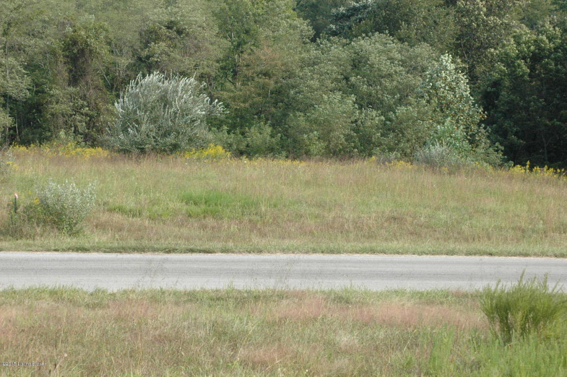 Residential Land - Shelbyville, KY (photo 5)