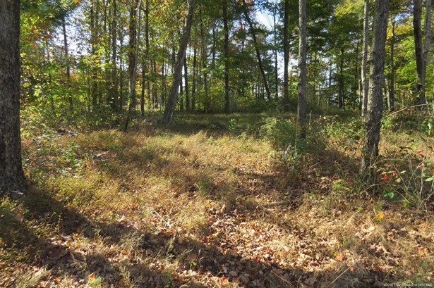 Vacant Land - Georgetown, IN (photo 3)