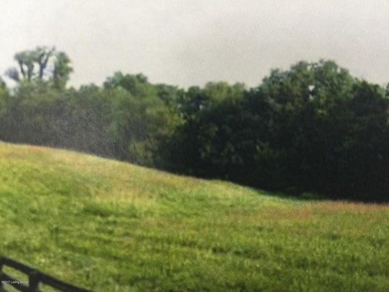 Residential Land - Prospect, KY (photo 4)