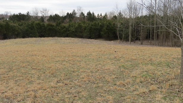 Residential Land - Radcliff, KY (photo 1)