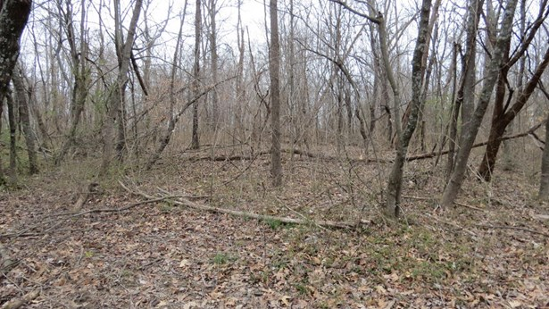 Residential Land - Radcliff, KY (photo 5)