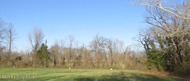 Residential Land - New Albany, IN (photo 4)