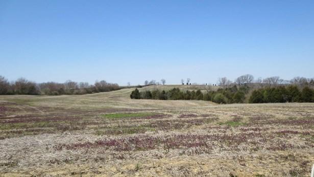 Single Family Residence, Farm - La Grange, KY (photo 2)
