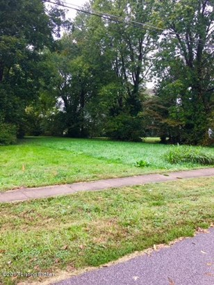 Residential Land - Taylorsville, KY (photo 3)