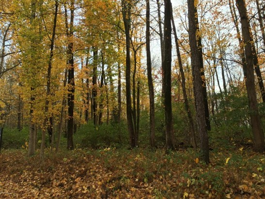 Residential Land - Glenview, KY (photo 1)