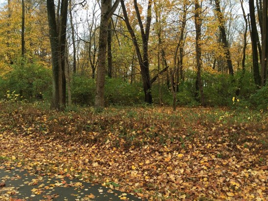 Residential Land - Glenview, KY (photo 2)