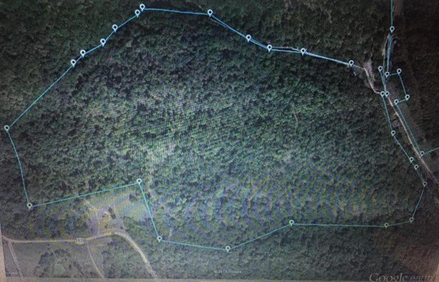 Residential Land - Bedford, KY (photo 2)