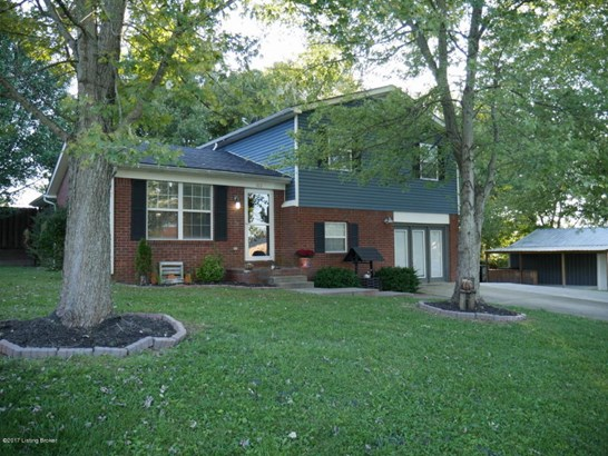 Tri-Level, Single Family Residence - Leitchfield, KY (photo 1)