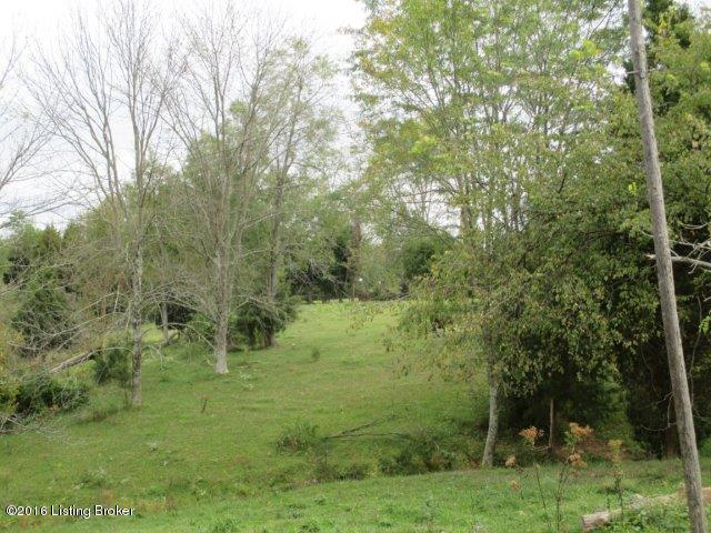 Residential Land - Goshen, KY (photo 3)