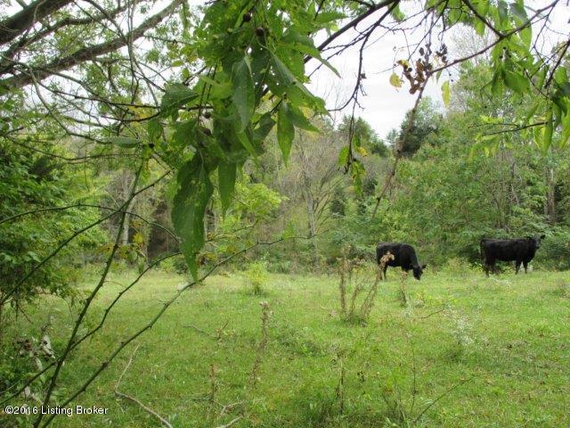 Residential Land - Goshen, KY (photo 5)