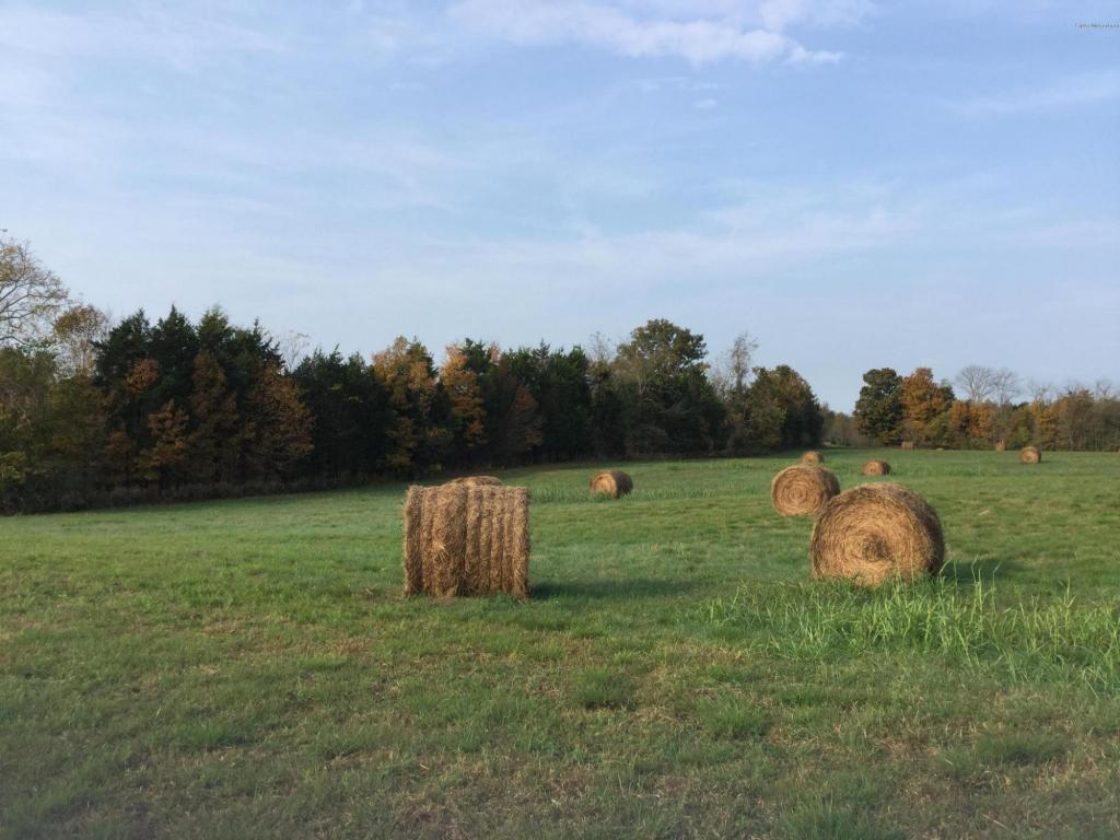 Residential Land - Taylorsville, KY (photo 1)