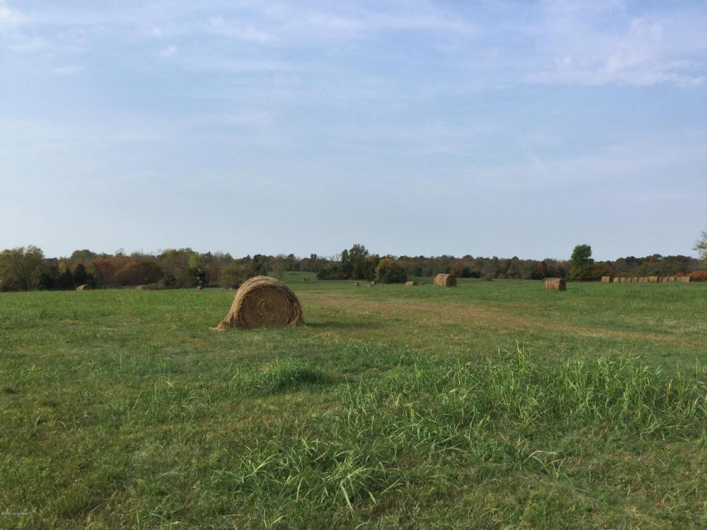 Residential Land - Taylorsville, KY (photo 4)