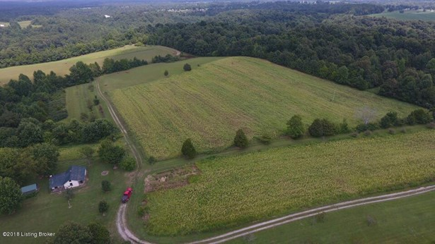 Residential Land - Bee Springs, KY (photo 4)