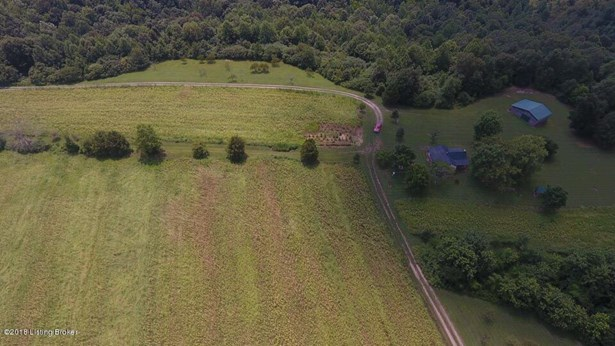 Residential Land - Bee Springs, KY (photo 5)