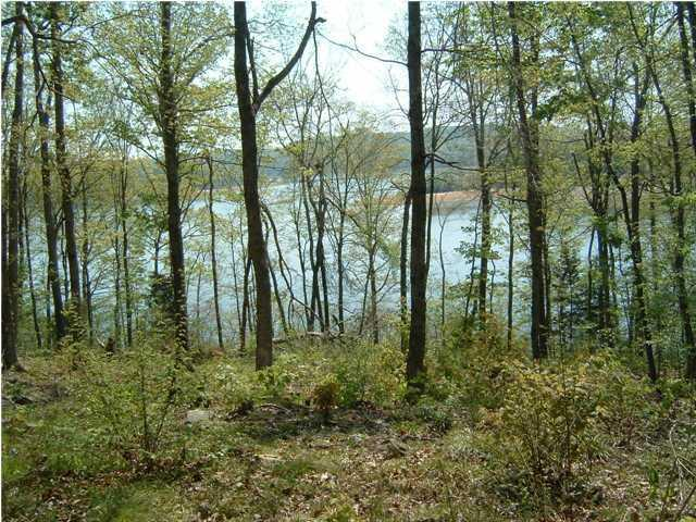 Residential Land - Leitchfield, KY (photo 3)
