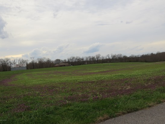 Residential Land - Bedford, KY (photo 5)