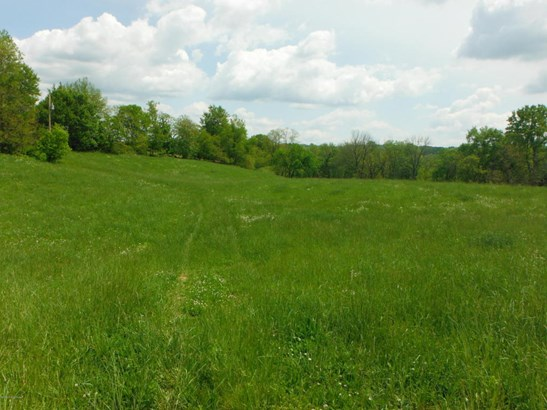 Residential Land - Pleasureville, KY (photo 1)