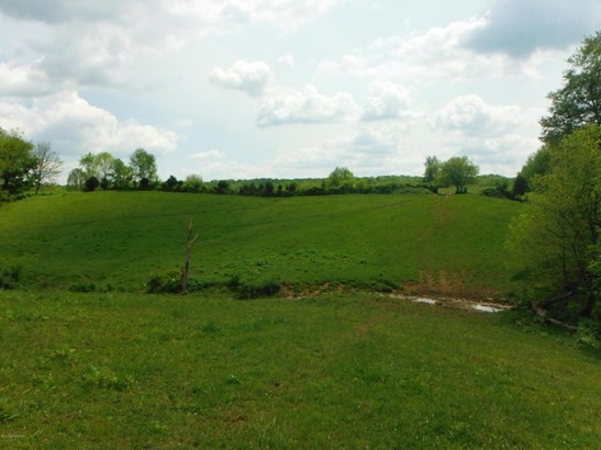 Residential Land - Pleasureville, KY (photo 3)