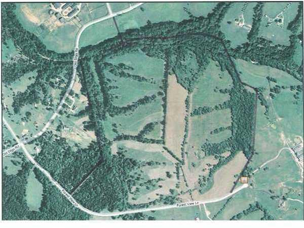 Farm - La Grange, KY (photo 2)