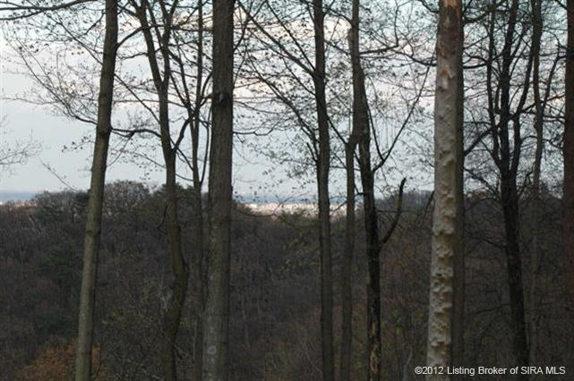 Vacant Land - Georgetown, IN (photo 4)