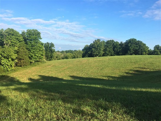 Residential Land - Louisville, KY (photo 4)