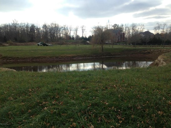 Residential Land - Pewee Valley, KY (photo 3)